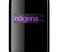 Foto: Indígena 2010