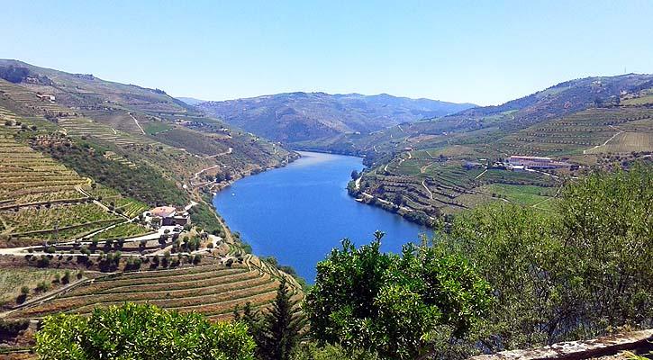 Foto: Un periplo por los vinos del Douro