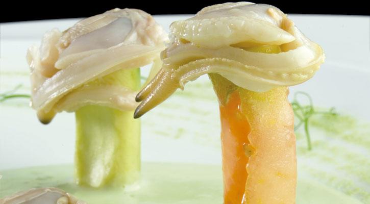 Foto: Gazpacho verde de aguacate, wasabi y almejas