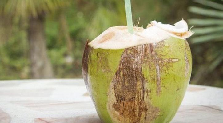 5 razones para probar el agua de coco, una bebida naturalmente ...