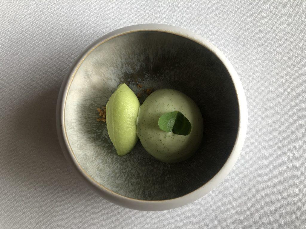 Manzana, pimiento verde, oxalis. Venta Moncalvillo. GastroActitud